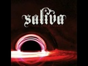 Saliva- They Dont Care About Us Michael Jackson Cover