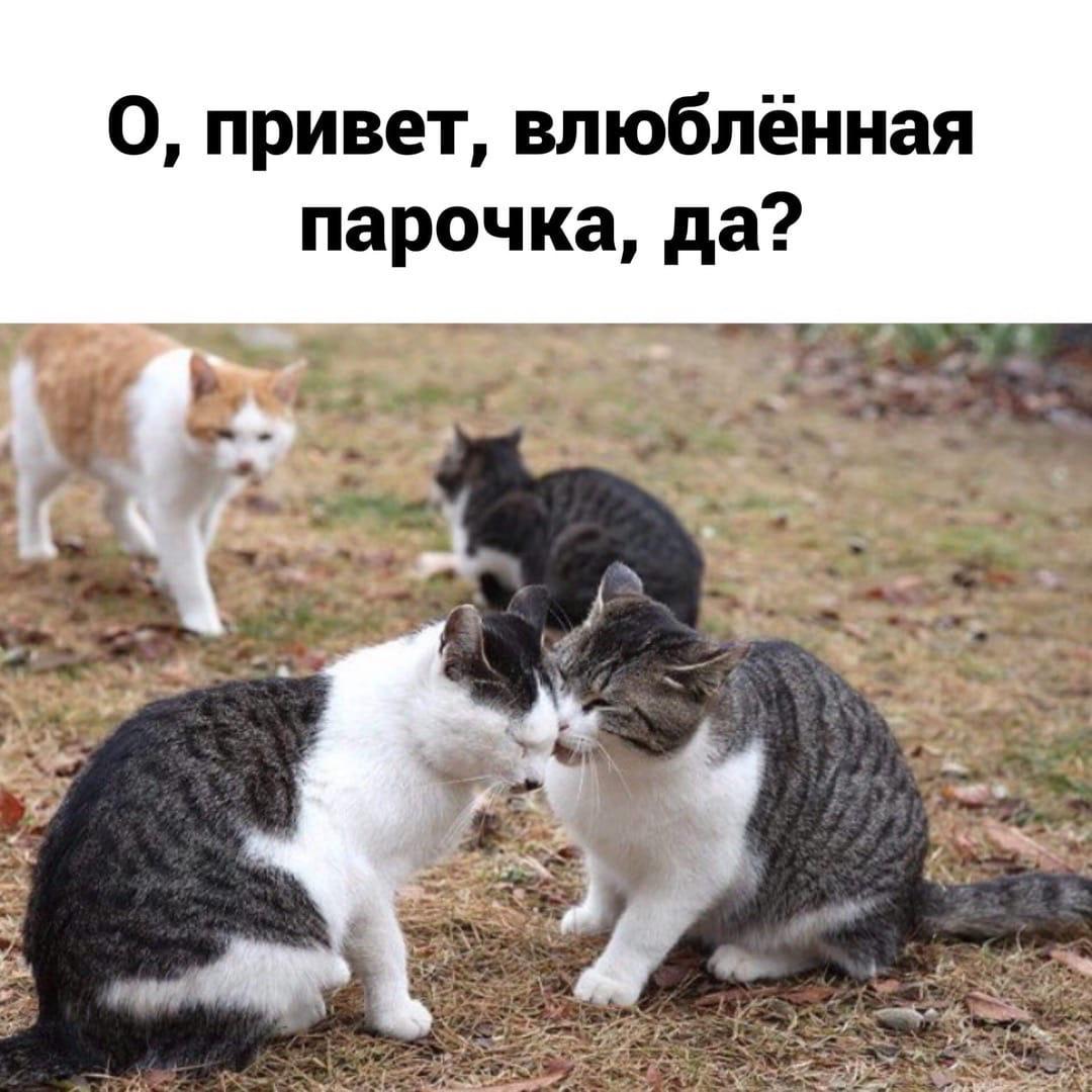 Этот кто то я)
