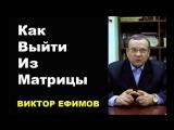 Как выйти из матрицы ? Виктор Ефимов