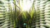 Будущее с Джеймсом Вудсом 6 серия Futurescape with James Woods (2013)