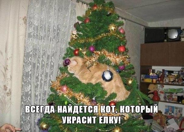 https://pp.vk.me/c413430/v413430553/5962/ZzrI0qWE-ug.jpg