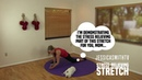 18-Minute Total Body Stress Relieving Dynamic Stretch - No Equipment, All Levels (Great for Travel!)