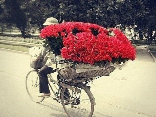 картинки цветы и женщины