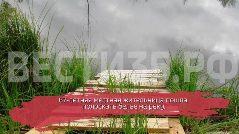 В Шекснинском районе пенсионерка пошла полоскать бельё и утонула