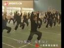 Xiao Luohan Gong Shang - Choy Lee Fut.Grandmaster Chan Yong Fa.