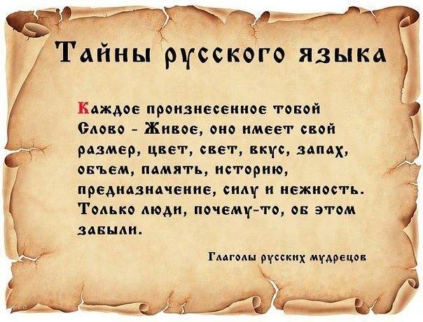 образование 19 века в украине