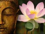 James Asher Lotus Path 13