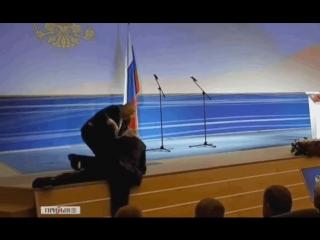 Владимир Вольфович устал