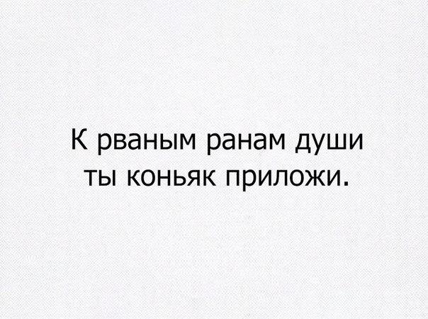 Xm0rkrUAMco.jpg