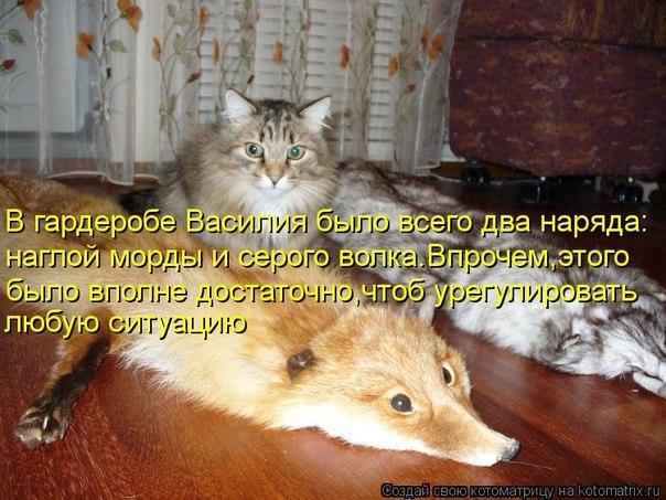 http://cs410419.vk.me/v410419453/7cfd/lK_sDkoyr2s.jpg