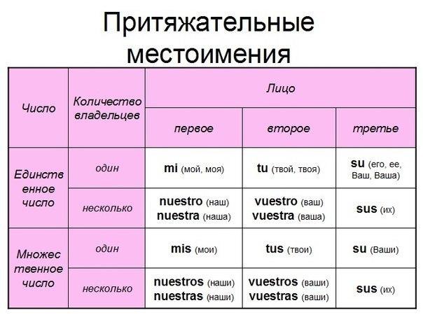 Притяжательные местоимения в английском языке Английский онлайн На английском притяжательные местоимения свою свой свои На английском притяжательные местоимения свою свой свои