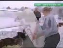 В Курской области на мороз выбросили более миллиона живых цыплят.