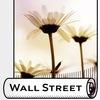 """Фотообои и фрески """"Wall Street"""""""