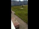 Суслики в Тольятти 😂