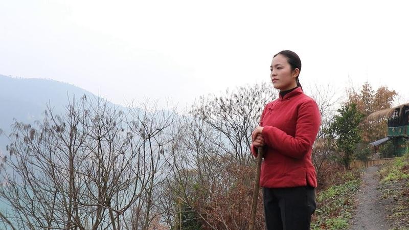 中国漂亮姑娘辞掉高薪工作,回到原始森林隐居起来,过着自耕自种的29983