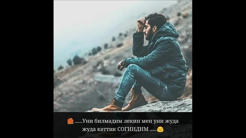 Anora_Anora