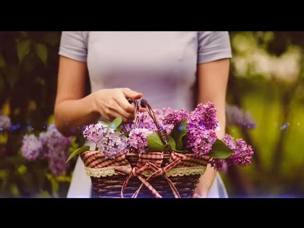 Тепле літо Іван Куренда lyric відео