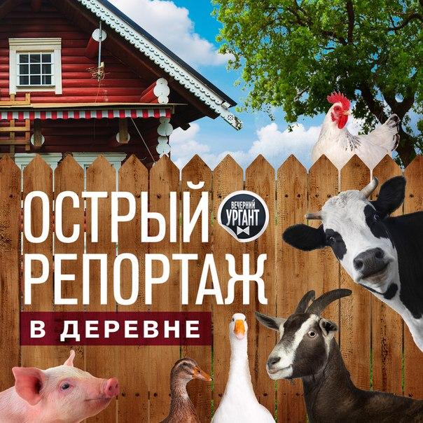 """Передача """"Вечерний Ургант"""" с Аллой Михеевой и не только. - Страница 6 98eb2FVh5PU"""
