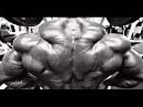 Best Bodybuilding Motivation 2014 - GO HARD OR GO HOME
