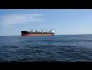 Заплыв по острова Сескар по Финскому заливу