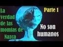 NO SON HUMANOS La verdad de las momias de Nazca Parte 1 NostraTv 09 01 19
