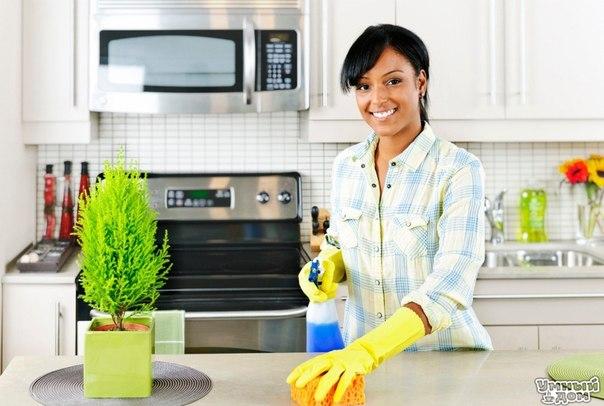 Как отмыть духовку и стекло в духовке с помощью мыла, уксуса и пищевой соды? А вот как легко и быстро можно отмыть духовку и стекло в ней. В глубокую миску с помощью тёрки настрогайте небольшой обмылок хозяйственного мыла и залейте эту стружку шипучкой из уксуса и пищевой соды, разведённой в тёплой воде. Всё тщательно перемешайте до полного растворения мыла, а затем густо покройте этой смесью стенки духовки и стекло на дверке. Спустя пару часов налейте в тазик тёплую воду, возьмите чистую…