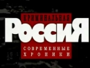 «Криминальная Россия. Современные хроники» 26. «Смерть у обочины»