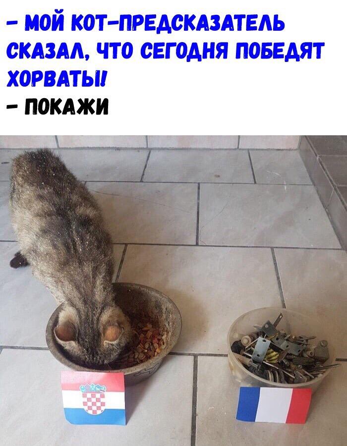 fLj0ov_N2l4.jpg