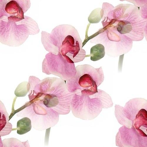 Цветочные и растительные фоны - Страница 2 JjkcbXfJVJg