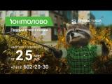 Енот Степан. Новые приключения в ЖК Юнтолово