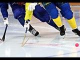Открытие 34-го чемпионата по хоккею с мячом, Швеция-Финляндия, 1 тайм, Bandy World Champ 2014