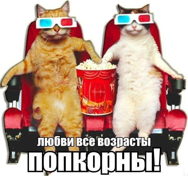 xaCBdiooZQI.jpg