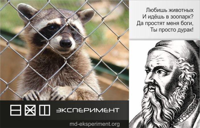 Пифагор Самосский, Экспериментатор