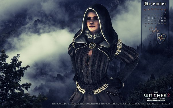 the witcher 2 assassins of kings коды
