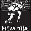 Клуб тайского бокса(Муайтай) Клинч. Самара