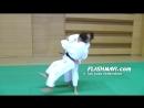 Judo Ushiro Goshi 後腰