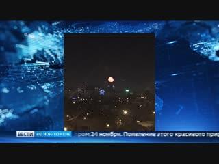 «Кровавую» луну и гало наблюдали тюменцы этой ночью
