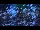SECRET GARDEN - Alexander Kulish Romantic trumpet