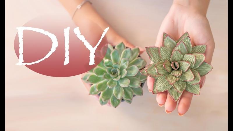 Суккулент из бумаги - DIY Tsvoric - Succulent paper