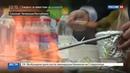 Новости на Россия 24 • Шашлык-Машлык : как создаются шедевры на мангале