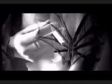 Pimpf   Depeche  Mode   FEMDOM -VERSION 2014  ( DAVIDMIX 09 )