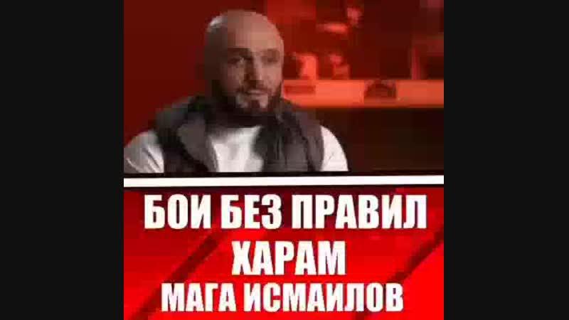 🔴 Бои без правил это Харам честный ответ от бойца ММА Маги Исмайлова MDK DAGESTAN