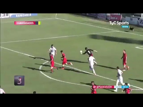 DOG Makes Incredible Goal-line SAVE During Football MATCH