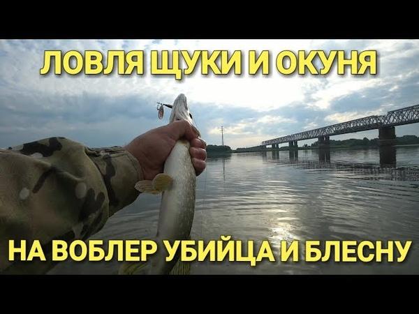 Рыбалка на спиннинг.Щука и Окунь на блесну.