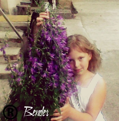 Виктория Мальчикова, 10 мая , Народичи, id153149336