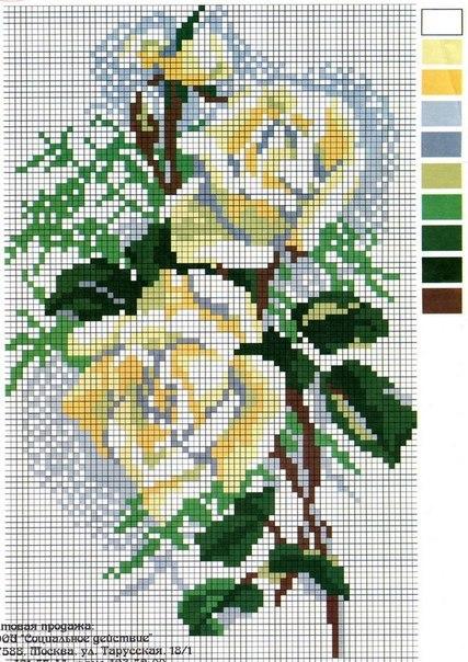Схемы вышивки - розы