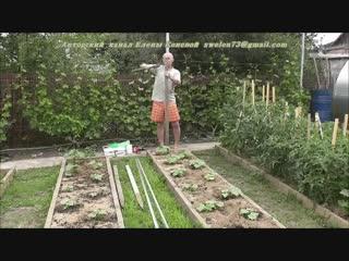 Шпалера для огурцов-Проект «GARDEN» igfkthf lkz juehwjd-ghjtrn «garden»