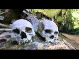 Индонезия. Остров Сулавеси. Анонс 5 серии | Мир Наизнанку - 5 сезон