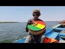 Rastafarian from Senegal