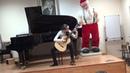 21.12.2014г. М.Каркасси Аллегретто Н.Паганини Вальс (Экзамен-концерт по гитаре)